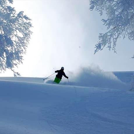 Iwao skiing