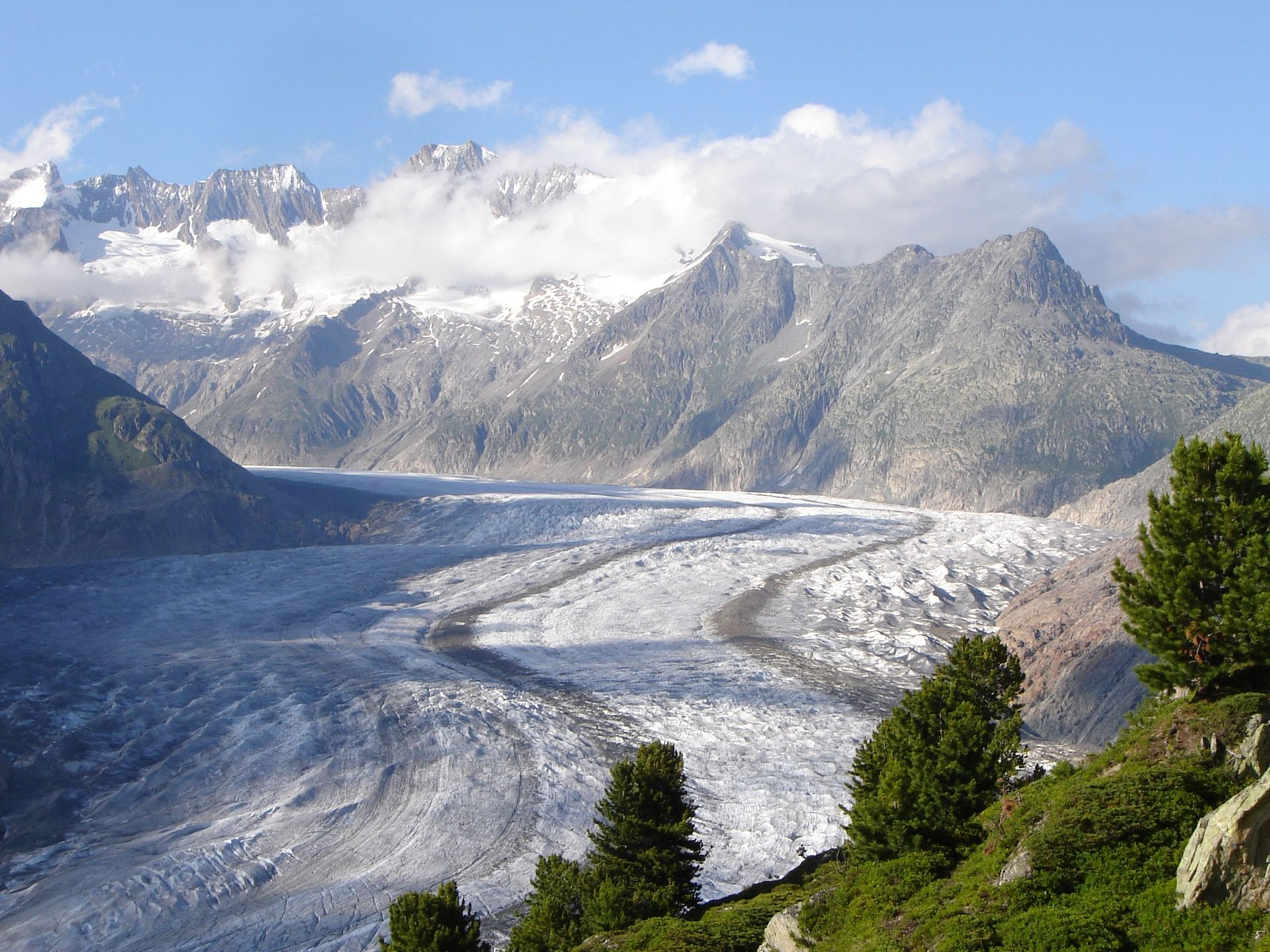 1-day Glacier Trek on the Aletsch Glacier in Switzerland. 1-day trip. IFMGA  leader