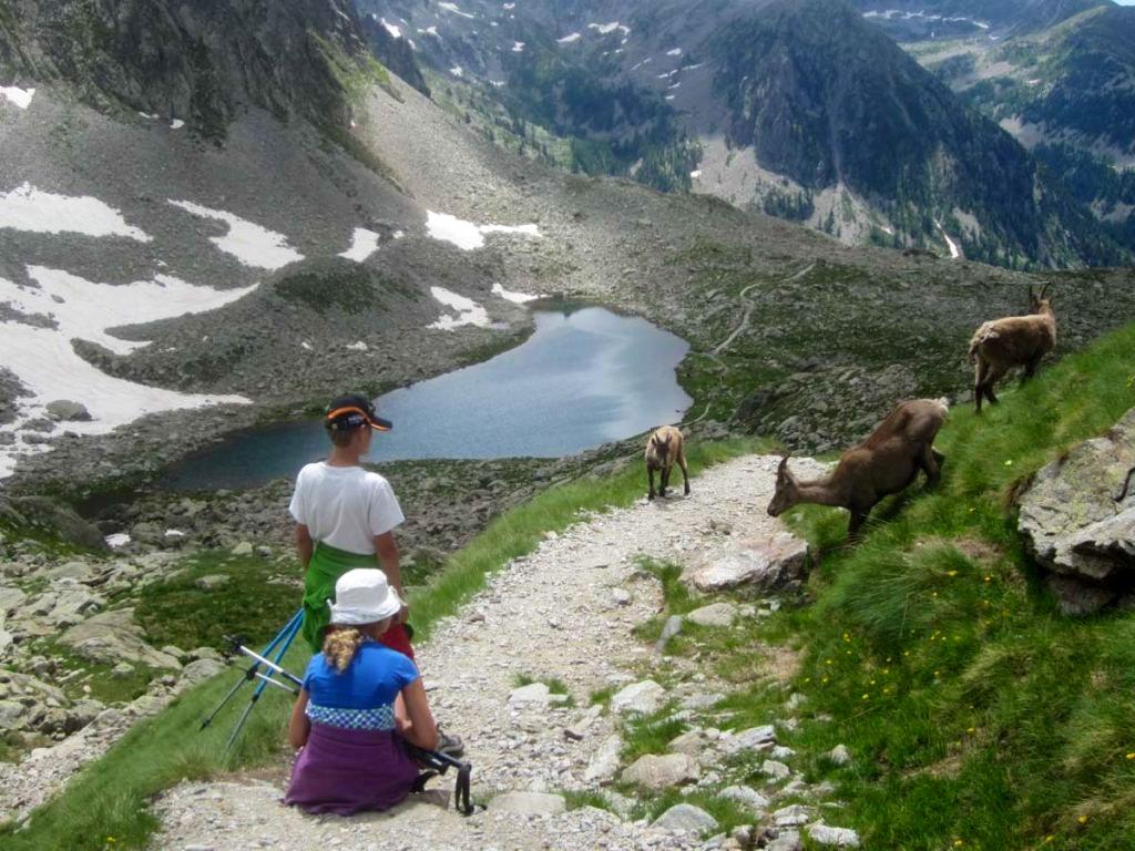 Mercantour National Park
