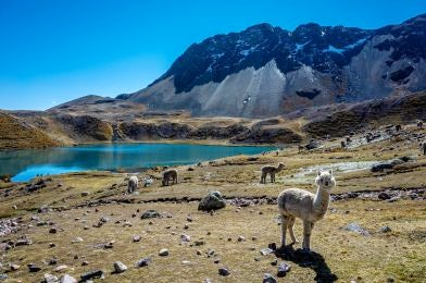 Hiking in South America.
